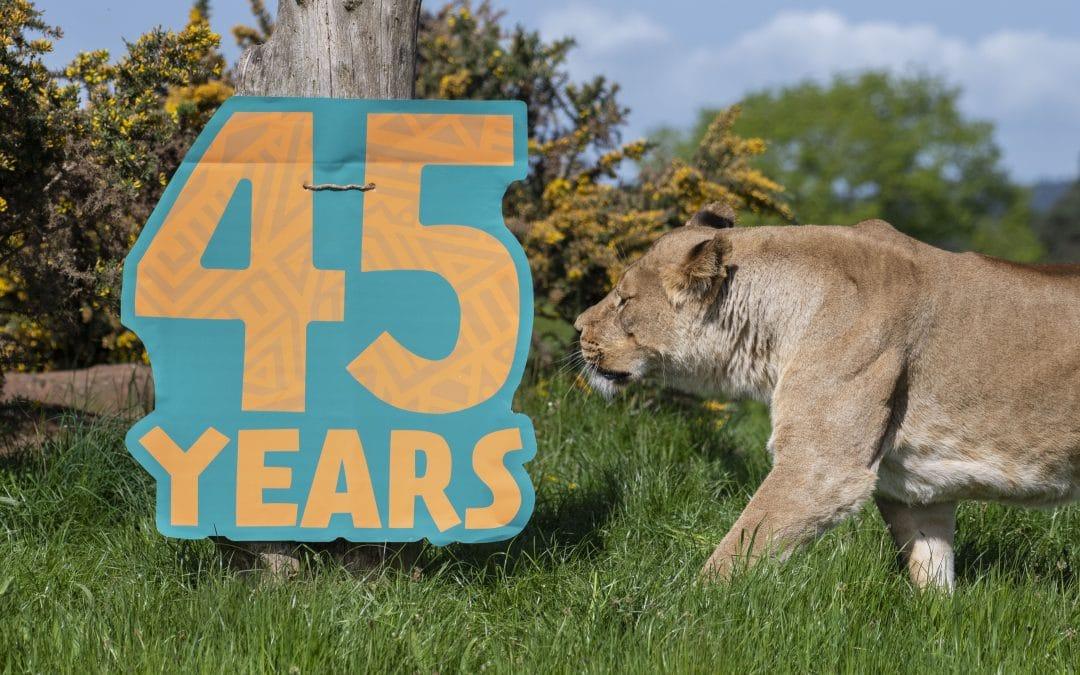Safari Park's pride for 45th anniversary