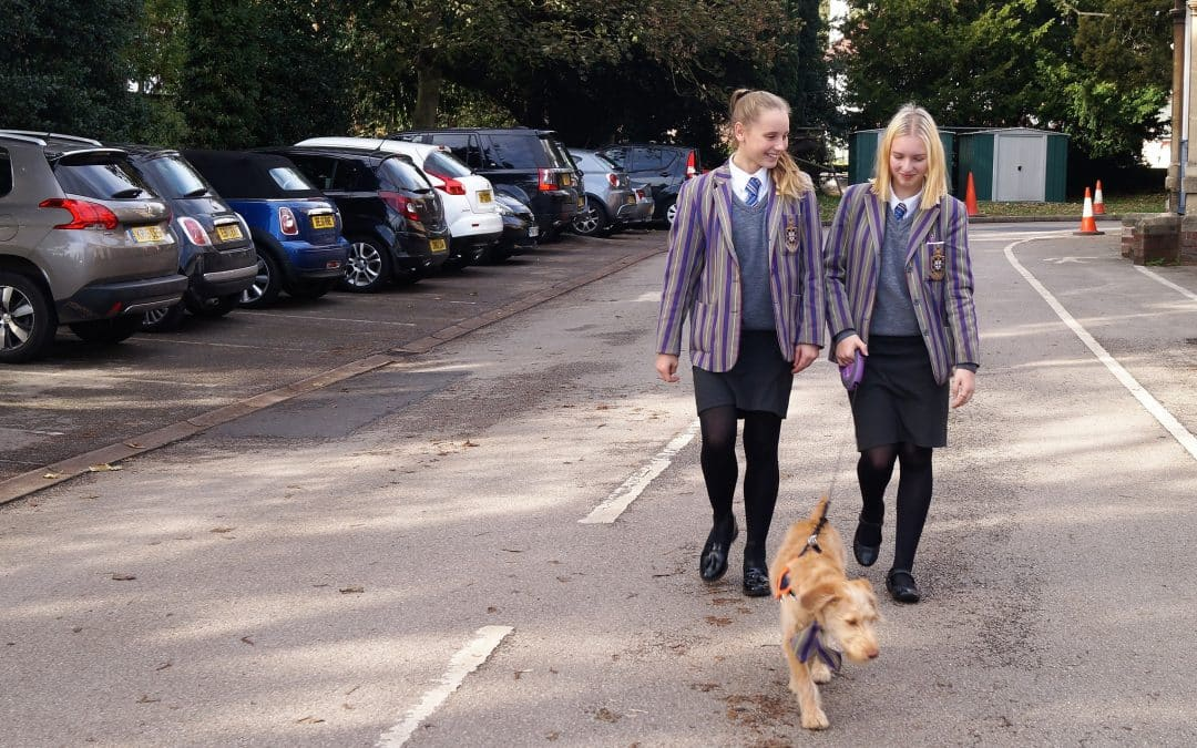 Holy Trinity's School Dog Makes Big Impact