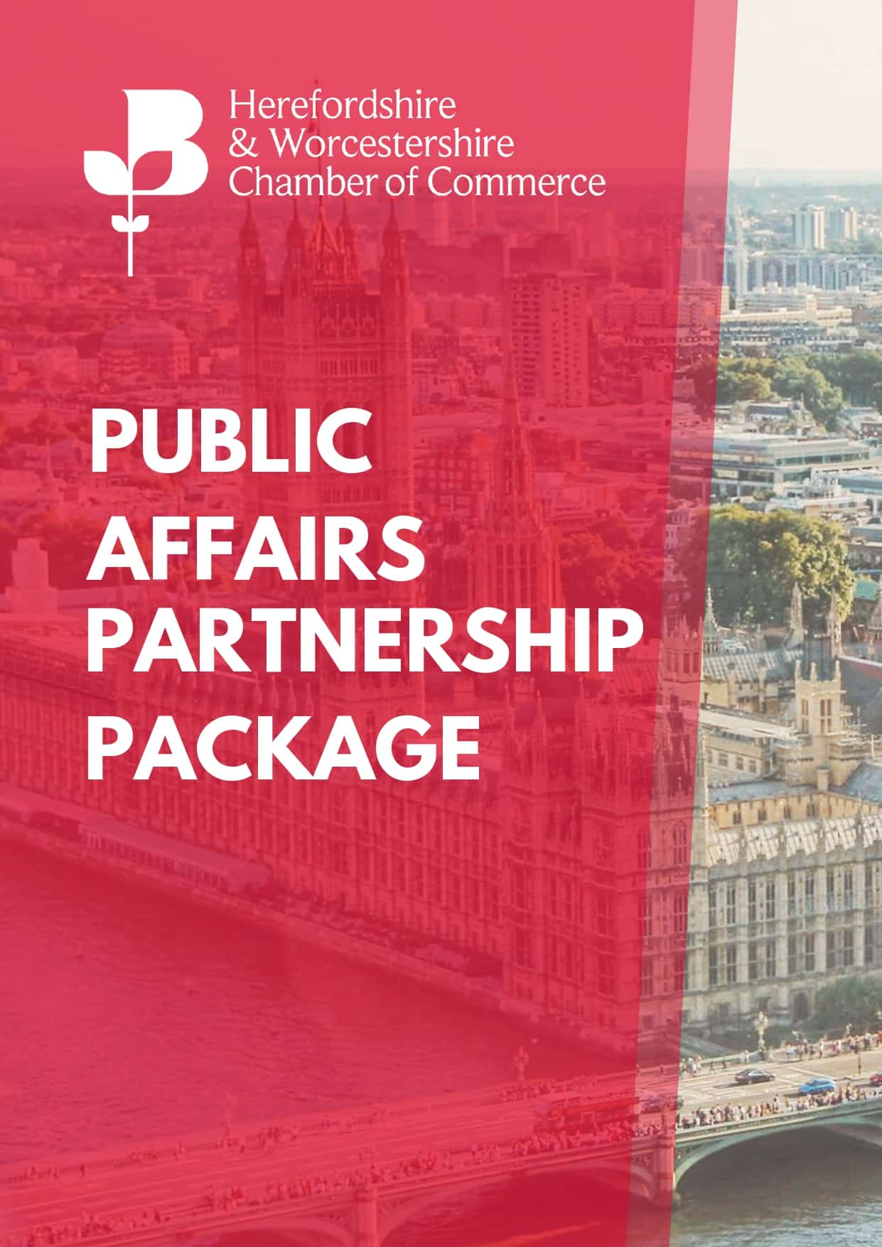 Public Affairs Partnership Package Front Cover