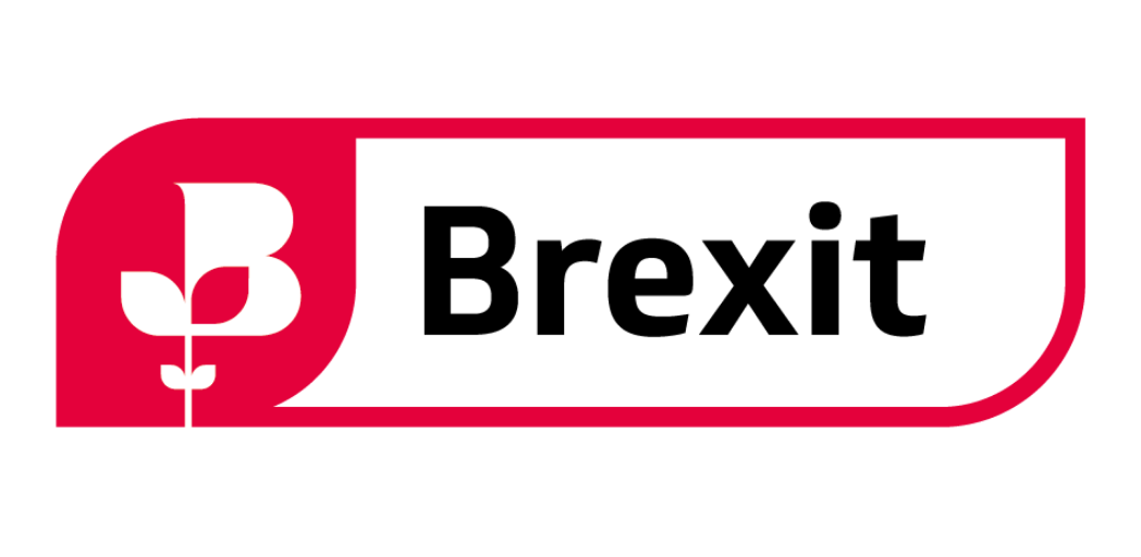 BCC Brexit survey: Half ofUK exporters report difficulties adapting to changes relating to EU-UK goods trade