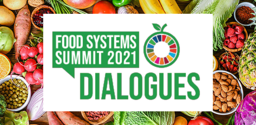 Food Systems Summit Dialogue