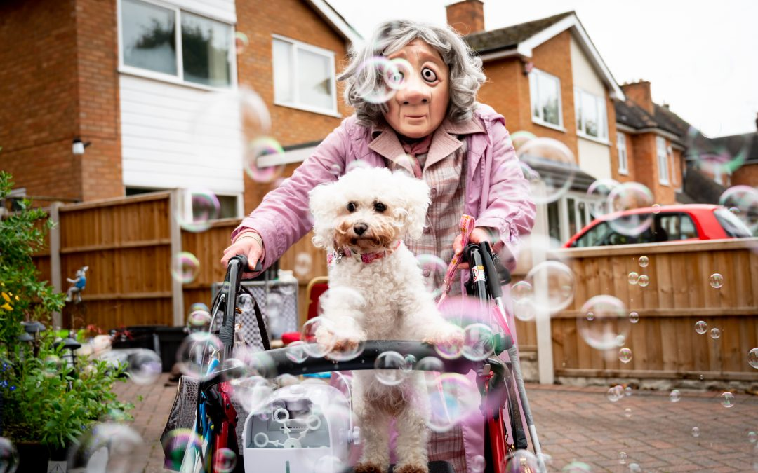 Norah the dog steals the show in Covid-safe performance for care homes
