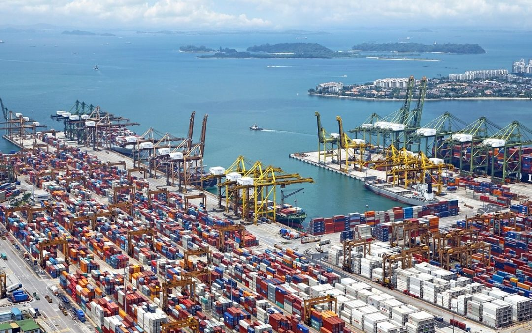 83% of local businesses find EU exports more difficult since 1 January