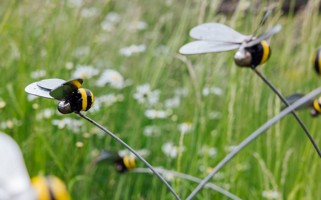 Beautiful bees to create a buzz at The Hive for hospice